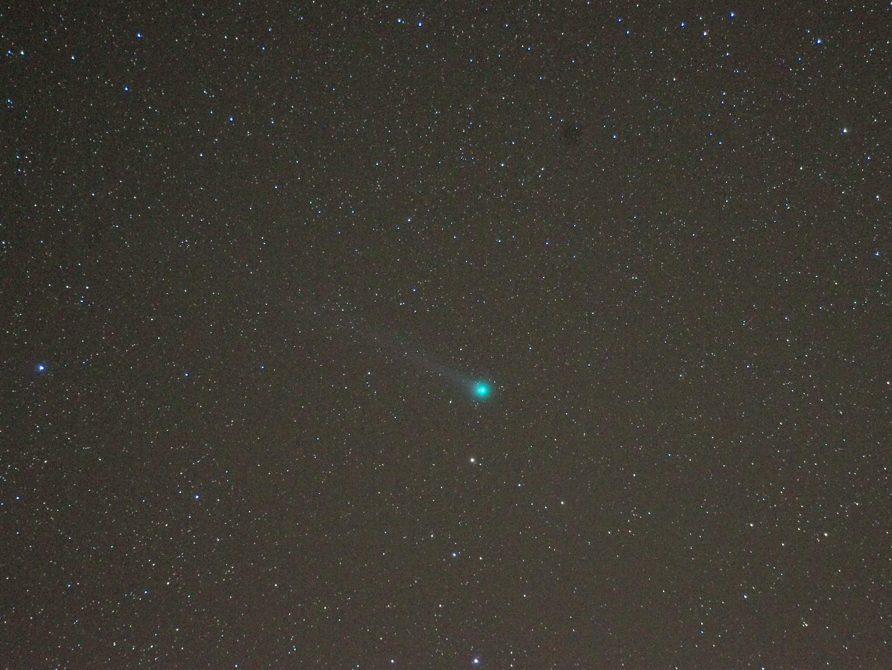 Lovejoy 11x30s 75mm 6400 Giotto Web